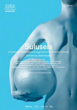 Suluseis